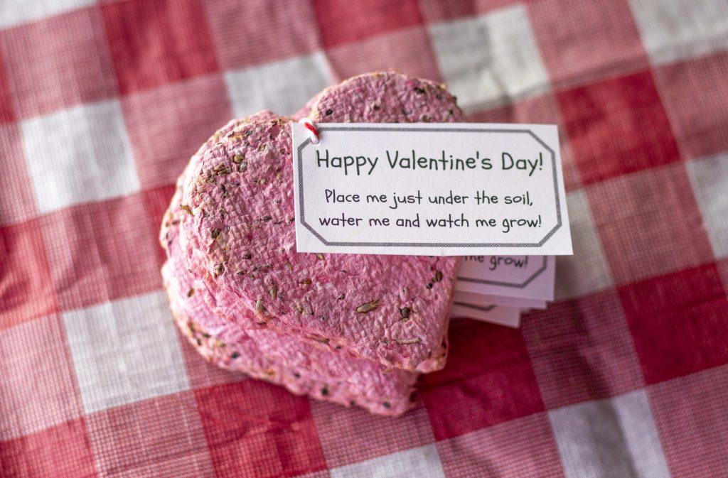 Flower Seed Paper Valentines