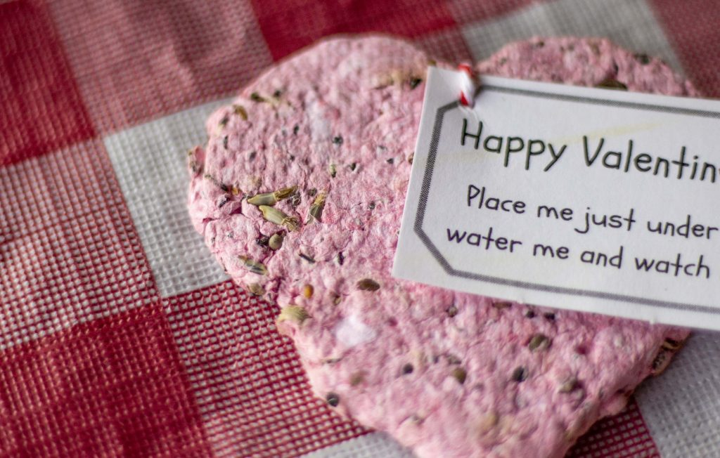 Plantable Seed Paper Valentines