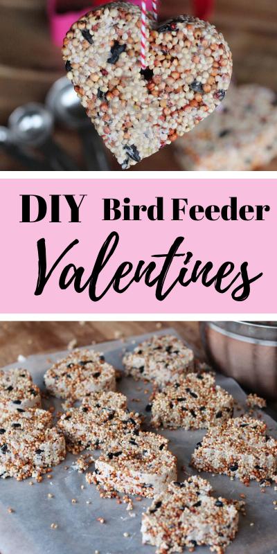 bird feeder valentines pinterest image